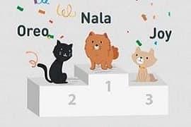 Palmarès des noms de chat 2018
