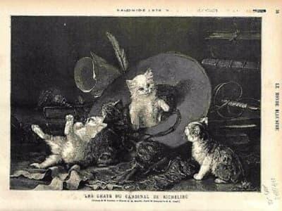tableau représentant les chats Angora Turc du Cardinal de Richelieu