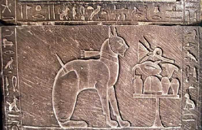 L'Égypte : Berceau de la domestication du chat