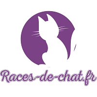Races de chat